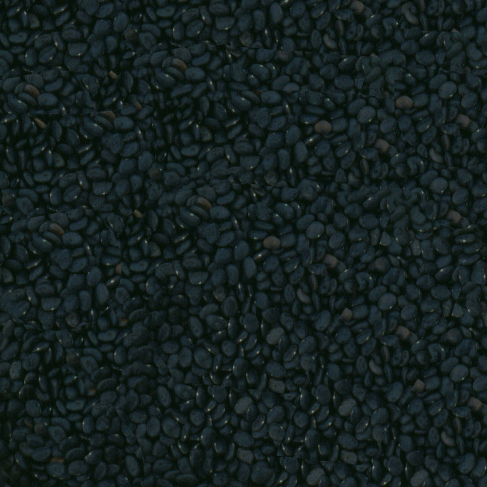 Tepary Beans, Black (Food)