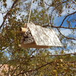 Desert Native Bee House Kit
