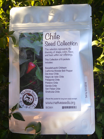 Chile Seed Collection
