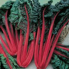 Starter - Swiss Chard - Ruby Red