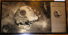 Star Wars Death Star II Limited Edition Geekograph Metal Art