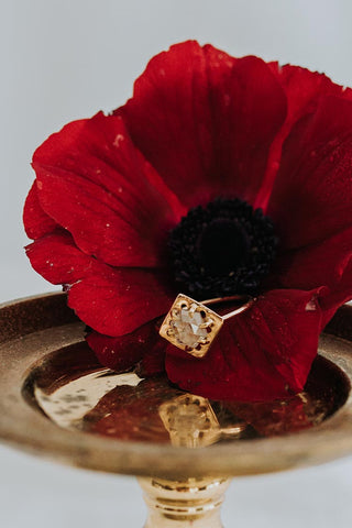 diamond ring in gold sitting on a red flower