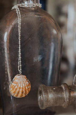 Prong Set Sunrise Shell Necklace