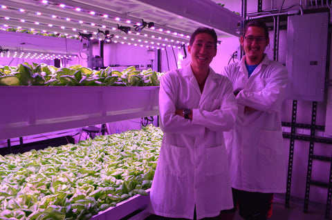 Vertical Farming Research