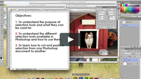photoshop e-learn