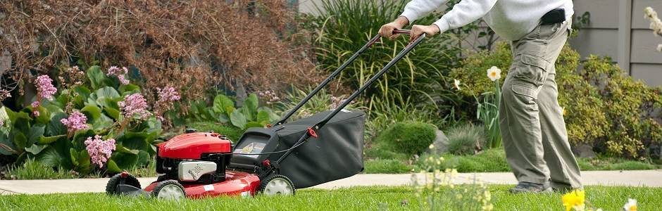 Lawn Mowers for All Lawns and Seasons