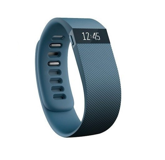 Fitbit Charge Activity Wristband - Slate - large - 1