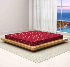 Sleepwell Latex Foam Mattress Duet Air