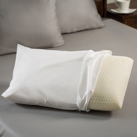 Latex Night Care Pillow - Sealy - 1
