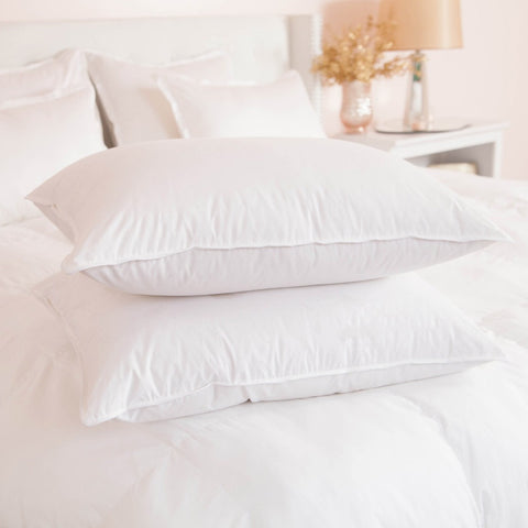 Sealy Standard Pillow - 1