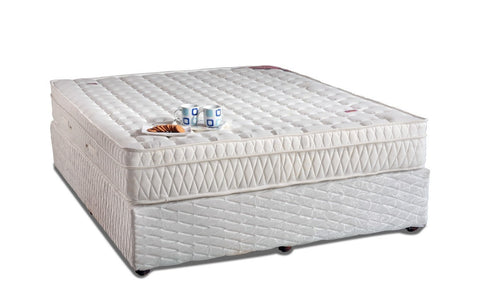 Latex Mattress Box Top - Springwel - 1