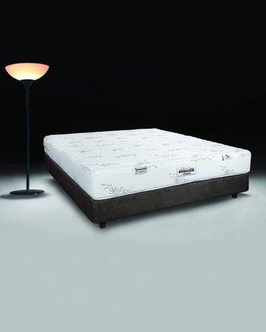 Snoozer Mattress Ortho Firm with Pocket spring & PU Foam Old Backup - 2