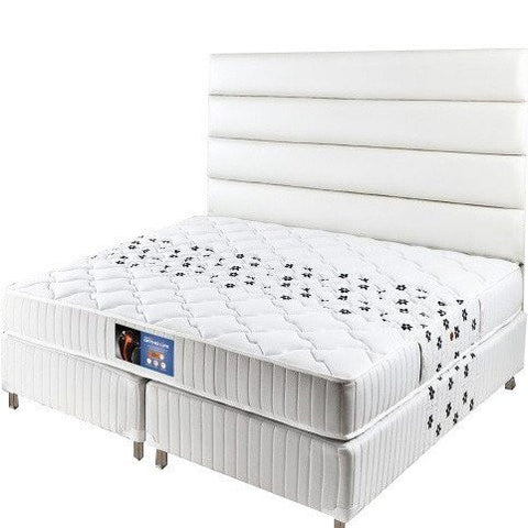 Springfit Mattress Ortholife - Eurotop - 9