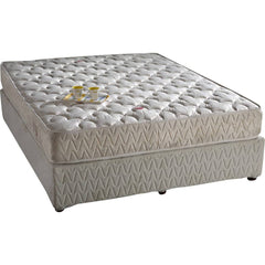 Springwel Mattress Latex Foam Comfort Plus