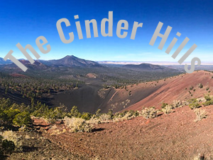 July Raptor Run-The Cinder Hills-Flagstaff