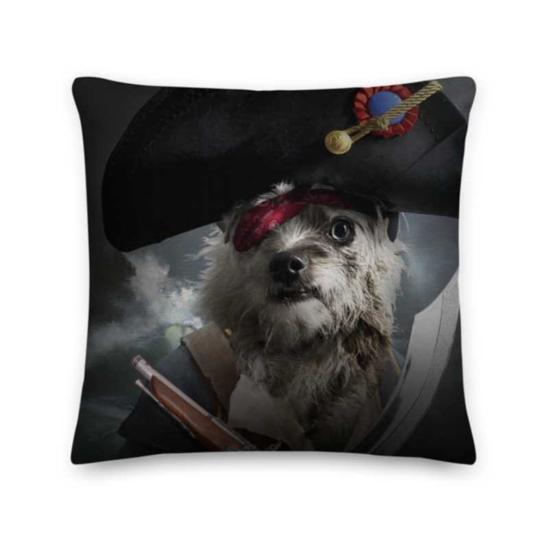 A Pillow- Captain Pirate