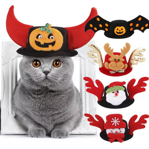 Best Cat Hats Halloween Christmas Batman Pumpkin Cap