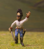 AHN6 Austrian-Hungarian 1804-12: Grenadier: Officer