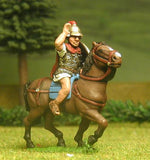 EXR9a Heavy Cavalry Officer