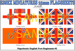 Flag 256 Napoleonic: English Foot Regiments # 2