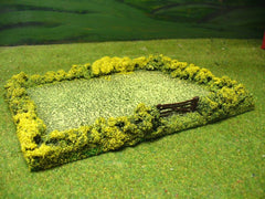 FLD2 Single Green Field with Hedge and Gate