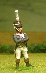 FN58 Line Infantry 1804-12: Officer in Shako