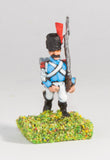 WES5 Westfalia or Berg: Line Grenadier in Bearskin