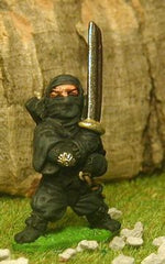 Q25 Ninja: with raised Sword