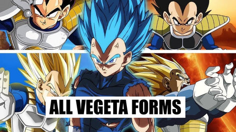 VEGETA ALL FORMS