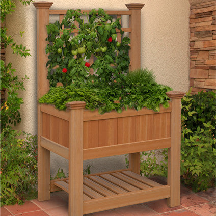 Bloomsbury Raised Planter with Trellis