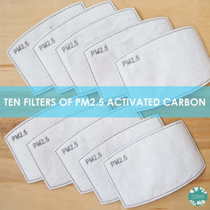 PM 2.5 FILTER ~ ACTIVATED CARBON | face mask