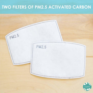 PM 2.5 FILTER ~ ACTIVATED CARBON ~ Set of 2 | face mask