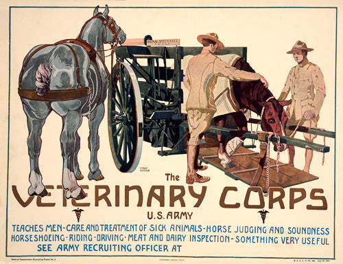 Veterinary Corps