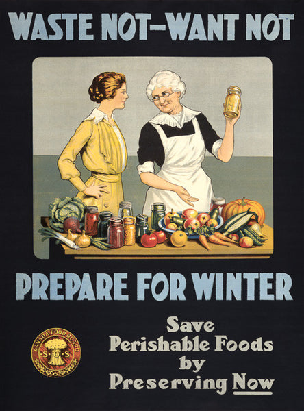 Waste Not, Want Not. Prepare for Winter. WWI Poster.
