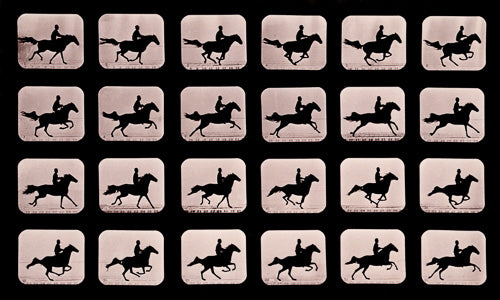 Eadweard Muybridge horse in motion