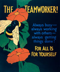 The Teamworker!