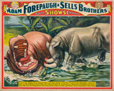 Adam Forepaugh & Sells Brothers poster