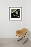 Assembling a Station in Space framed print in room