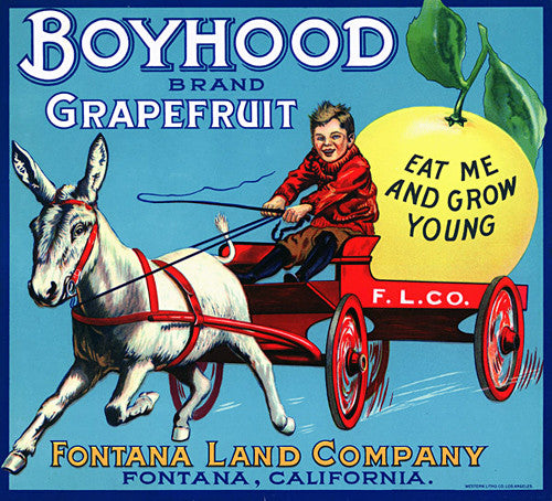Boyhood Grapefruit