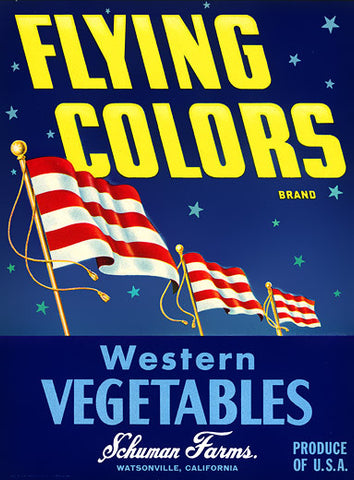 Flying Colors Vegetables