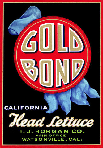 Gold Bond Head Lettuce