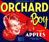 Orchard Boy Apples
