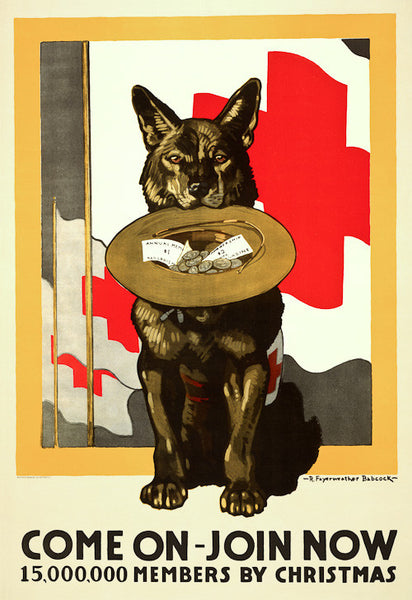 Red Cross Canine