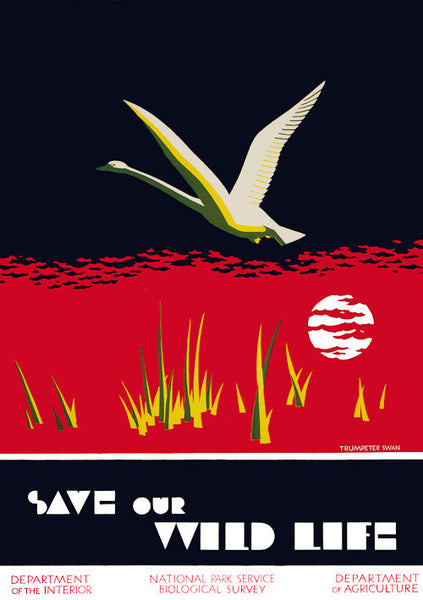 Save our Wild Life National Park poster.
