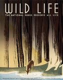 Wild Life: The National Parks Preserve All Life