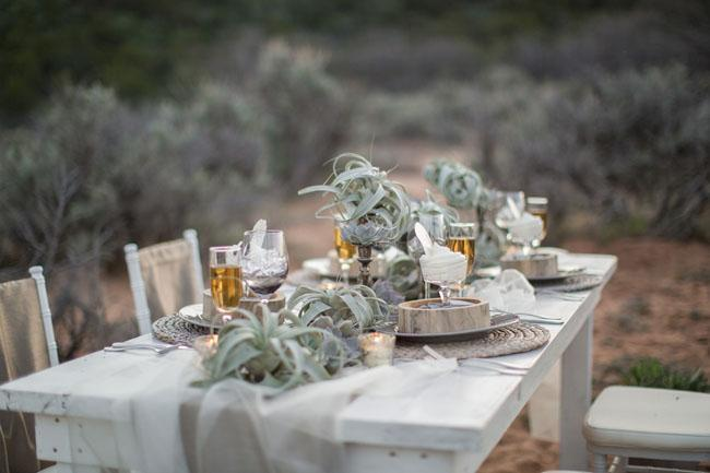 Air Plant Weddings: Table Decor