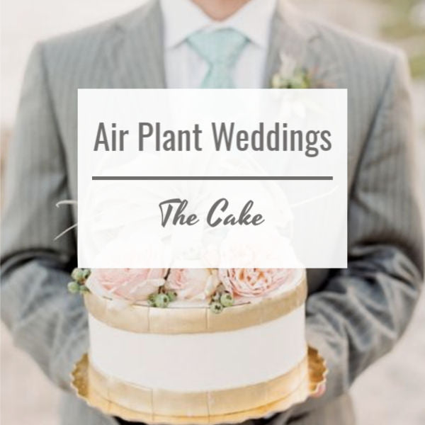Air Plant Weddings: The Cake