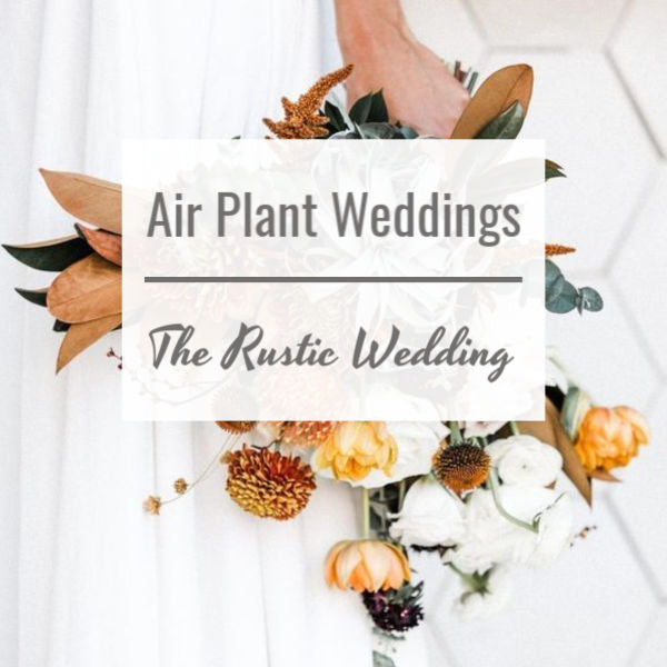 Air Plant Weddings: The Rustic Wedding