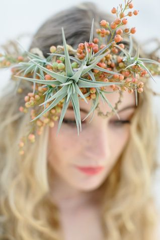 air plant floral crown
