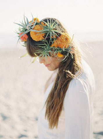 air plants in hair